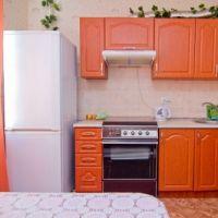 Квартира посуточно Империя кухня, бытовые приборы